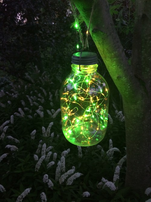 Outdoor String Lights No Bugs : Bug Brightz - Random Twinkling LED Lights